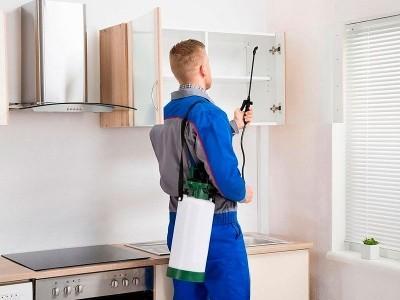 Санобработка квартиры